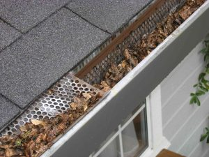 Maintaing your gutters